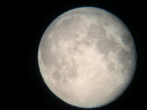 steve's moon