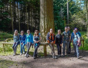 guided walk group Nutcombe Bottom