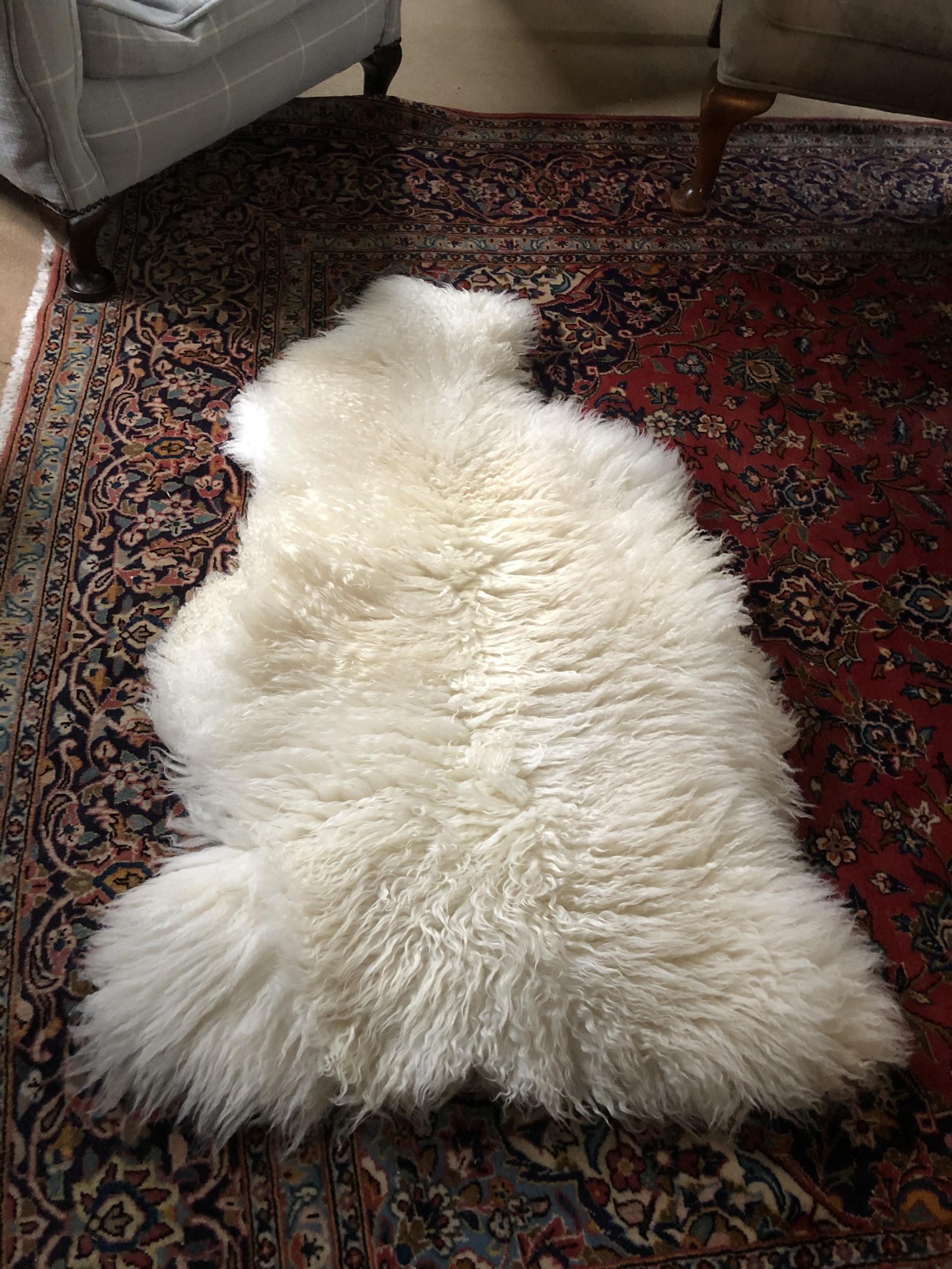 rarebreed sheepskin rug